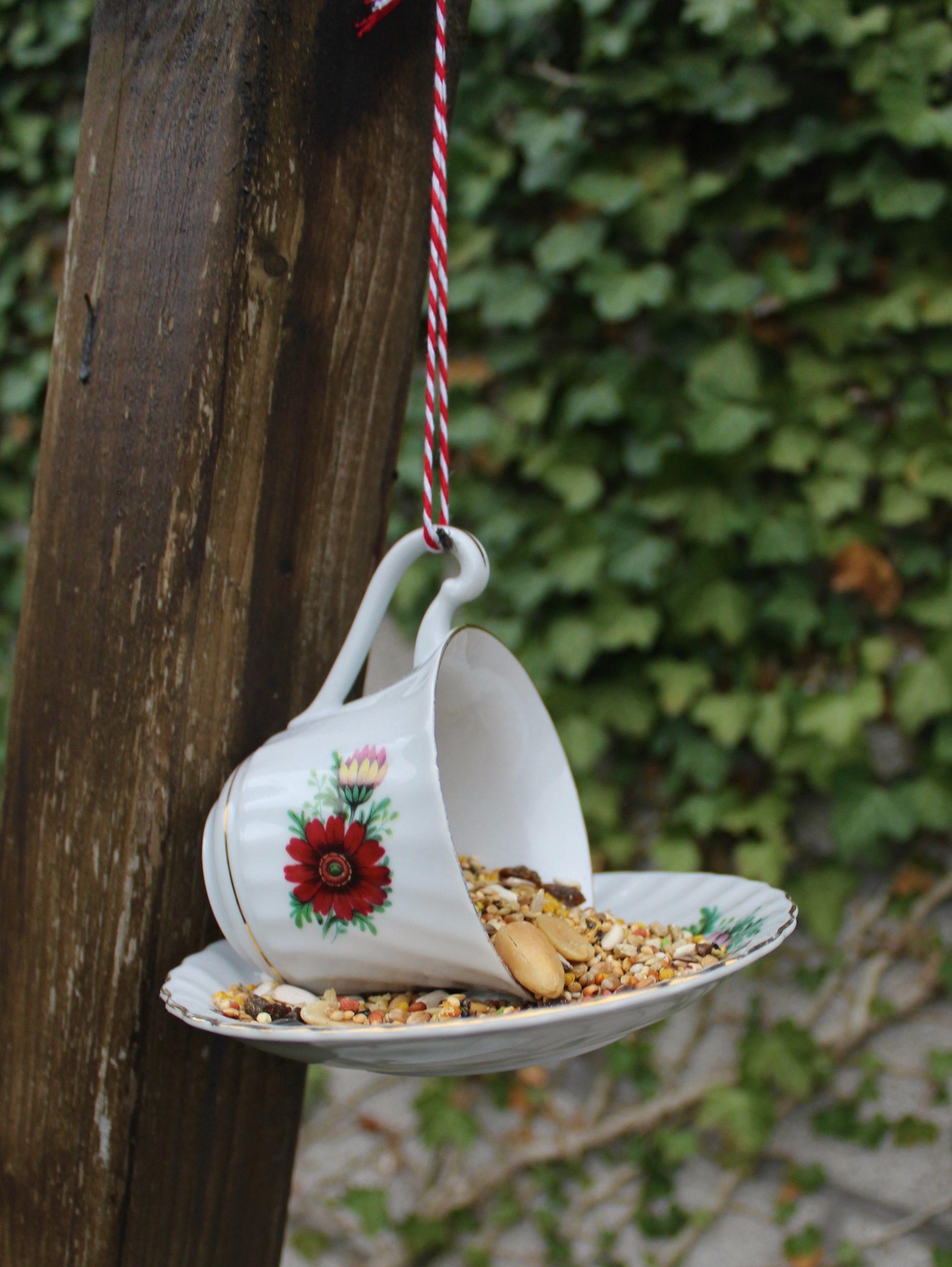 Bird Feeder Tea Cups